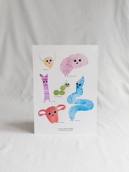 Liv och Hens vänner - Poster Produktbild
